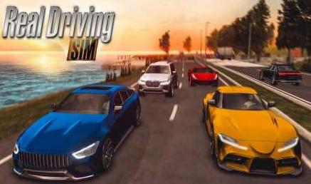real-driving-sim-apk