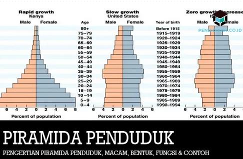 piramida-penduduk